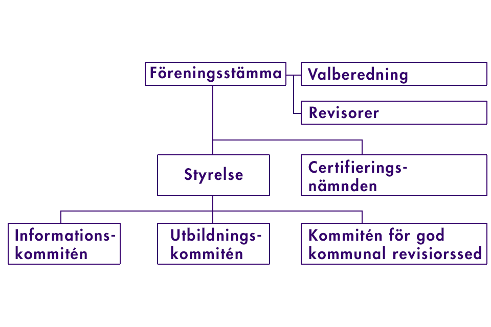 organisation Skyrev